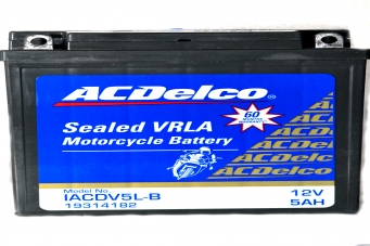 ACDelco Sealed VRLA IACDV5L-B Battery