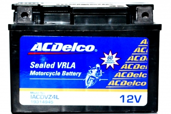 ACDelco Sealed VRLA IACDVZ4L Battery